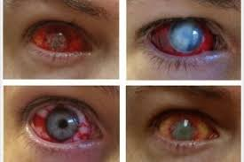 where to get halloween contacts photo album best fashion trends