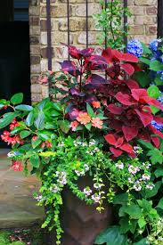 Shade Garden Vegetables by Part Shade Container Combines Both Blooms And Leaves For Color