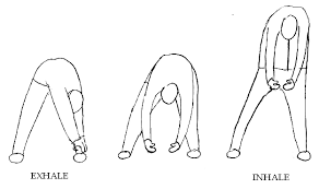 exercises for back pain with diagrams