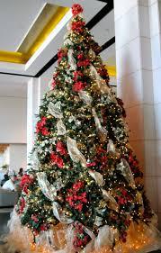 Decorated Halloween Trees Christmas The Orange Christmas Tree Or Halloween Trees Treetopia