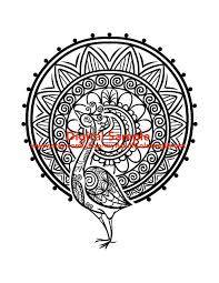 peacock coloring page for adults peacock coloring page