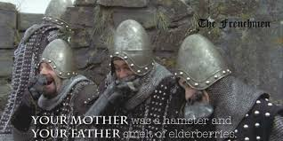 your mother was a hamster monty python and the holy grail
