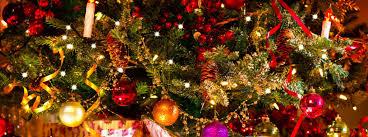 best christmas tree 5 places best christmas tree farms near overland park ks o neill