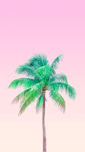 Palm Tree Wallpaper Minimalist Wallpapers By Matt Crump