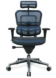 Office Chairs For Bad Backs Design Ideas Office Stools For Bad Backs 4 Pick Ergohuman High Back Mesh Chair