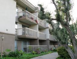 apartment new university of oakwood apartments tampa fl home