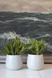 grünpflanzen im schlafzimmer grünpflanzen eine interviewfrage dieartige design studio