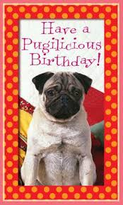 happy birthday pug puppy dog greeting card birthday pinterest