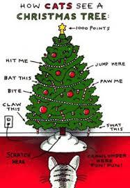 Cat Christmas Tree Meme - cc forums kitty cat club general chat kitty christmas