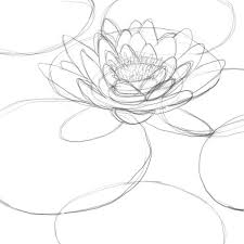 how to draw a lily pad drawing factory