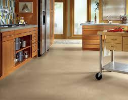 Kitchen Vinyl Floor Tiles by 204 Best Kitchen Decor Images On Pinterest Home Kitchen And