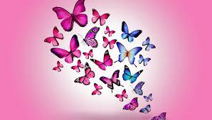 wallpaper butterfly design free wallpaper flower designs high
