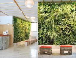 Interior Plant Wall 544 Best Vertical Gardens Images On Pinterest Vertical Gardens