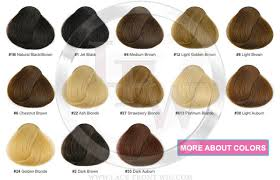 hair color chart hair color chart for wigs and hair extensions