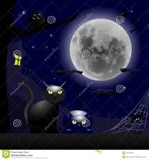 halloween cats background two cats and a full moon halloween theme stock vector image