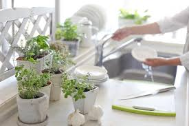 kitchen window with plants caurora com just all about windows and