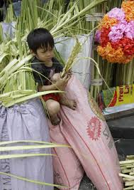 palm fronds for palm sunday the true meaning of palm sunday the guardian newspaper