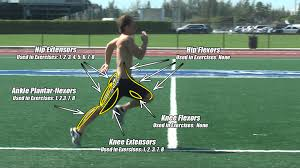 40m to feet improve your 40 speed by increasing your running stride u0026 turnover