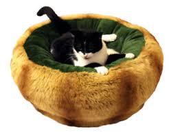 Medium Sized Dog Beds Modern Pet Bed Etsy