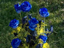 Blue Roses Knumathise Real Blue Roses For Sale Images