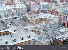 winter garden and roofs of ledeburska palace prague picture