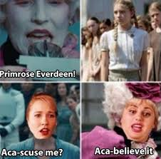 Hunger Games Funny Memes - hunger games vs pitch perfect the meta picture