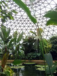 brisbane native plants brisbane u0027s best green space brisbane