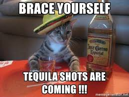 Brace Yourself Meme Generator - brace yourself tequila shots are coming mexican cat drunk