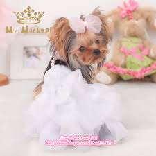 dog wedding dress charming dog wedding dress 58 for your princess dresses with dog