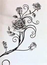 download rose vine drawing tattoo danielhuscroft com