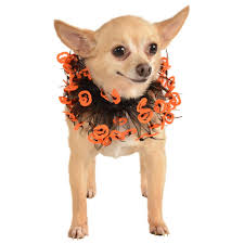 pet costume halloween jack o u0027lantern pet costume collar the animal rescue site
