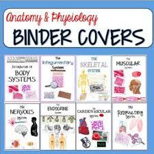 Human Anatomy And Physiology Review Viac Ako 25 Najlepších Nápadov Na Pintereste Na Tému Anatomy And