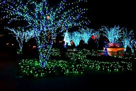 atlanta botanical garden lights atlanta botanical garden lights holiday nights tom sullivan