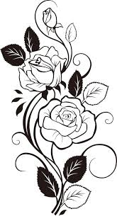 design flower rose drawing 46 best drawings images on pinterest drawing ideas how to draw