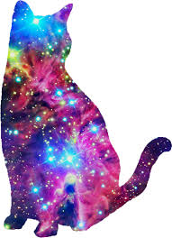 cat universe wallpaper galaxy cat i don t know why i like this so much haha things i