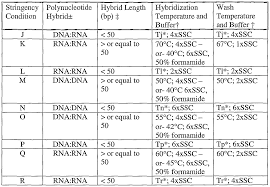 patent wo2004005487a2 polynucleotides encoding a novel testis