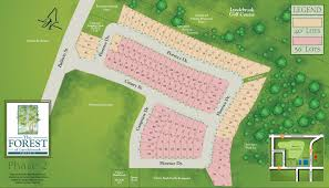 new homes in whitby at the forest of lyndebrook by lakeview homes