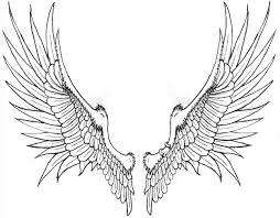 wings drawing free download clip art free clip art on