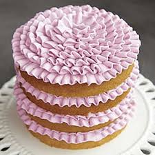 Free Wilton Cake Decorating Books Classes At Milly U0027s Milly U0027s Kitchenware