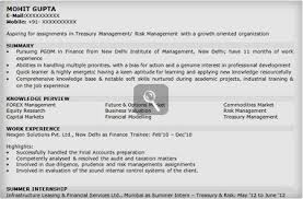 resume summary examples for freshers 166 best images about resume