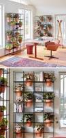 807 best jardim vertical e telhado verde 2 images on pinterest