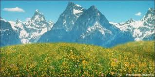 mountain backdrop aspen mountains 7 backdrop backdrops beautiful
