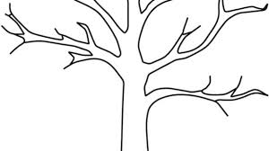 outline drawing of a tree dead tree outline coloring page free