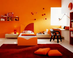 paint colors for drawing room wall ideas nerolac colour