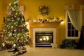 christmas tree fact guide american christmas tree association