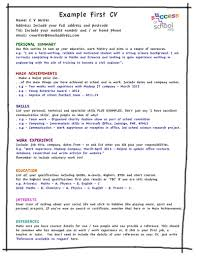 Profile Part Of A Resume How To Make A Resume For Your First Job Free Resume Example And