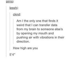 How High Are You Meme - how high are you tumblr know your meme