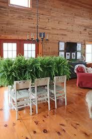 spring black friday 2016 date home depot 5 boston ferns creative cain cabin