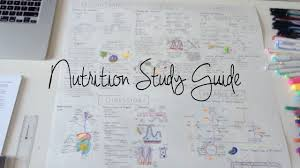 study with me giant nutrition study guide vlog 16