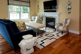 Blue And Gold Home Decor Transitional Spaces Transitional Living Room Philadelphia